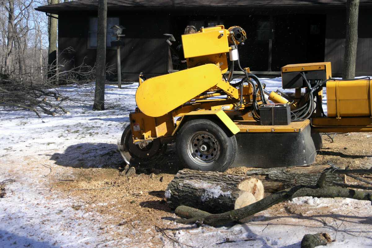Tips for Choosing a Used Stump Grinder