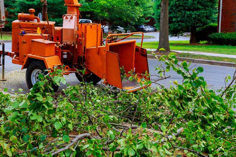 Best Maintenance Tips For Blueband Stump Grinder Teeth