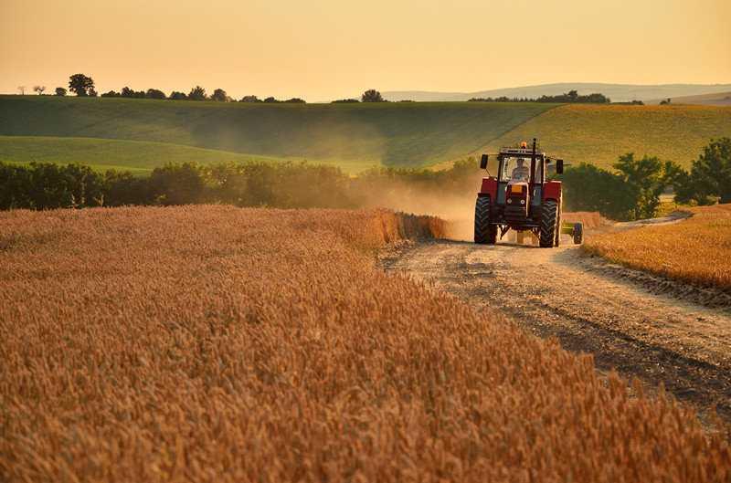 agricultural mulcher