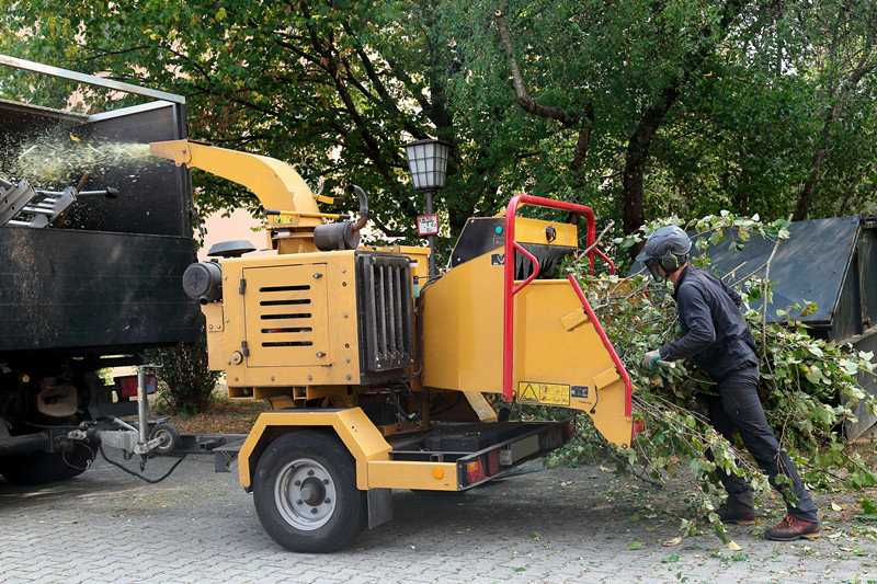 Key Praxis Stump Grinder Parts You Should Check Regularly